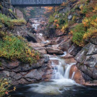 CharlesSimpson.com Covered Bridge - 1000 Piece Jigsaw Puzzle